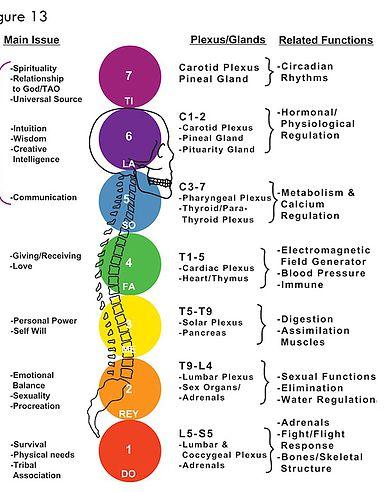 Yoga and Massage – Hopewood Holistic Health